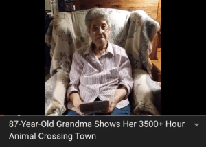 """Video games cause violence."" Yeah right it does.: 87-Year-Old Grandma Shows Her 3500+ Hour  Animal Crossing Town ""Video games cause violence."" Yeah right it does."