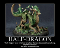 "Annnnnnd I'll just leave this here...: HALF-DRAGON  ""Half-dragon"" is an inherited template that can be added to any living,  corporeal creature.  Yes, that includes Plants. Annnnnnd I'll just leave this here..."