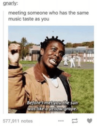Meeting Meme: gnarly:  meeting someone who has the same  music taste as you  Before met you the sun  was like o yellow grape.  577,911 notes