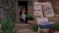 Wrestling, World Wrestling Entertainment, and Sugar: SUGAR  CANE  CA  SUGAR CANE  AP CANE  CANE  SUGAR This is mostly the reason I'm sad Tazz is no longer with TNA