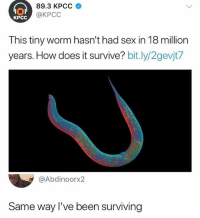 Sex, Relatable, and Been: 89.3 KPCC  @KPCC  KPCC  This tiny worm hasn't had sex in 18 million  years. How does it survive? bit.ly/2gevjt7  @Abdinoorx2  Same way I've been surviving 🤯