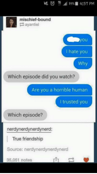 Memes, Friendship, and 🤖: 89% 4:57 PM  mischief-bound  ayantiel  you  hate you  Why  Which episode did you watch?  Are you a horrible human  trusted you  Which episode?  nerdynerdynerdynerd:  True friendship  Source: nerdynerdynerdynerd  35,051 notes
