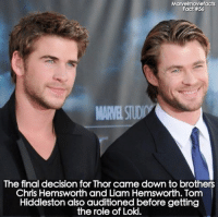 ~ Deadpool: Marvelmoviefacts  Fact #56  The final decision for Thor came down to brothers  Chris Hemsworth and Liam Hemsworth. Tom  Hiddleston also auditioned before getting  the role of Loki. ~ Deadpool