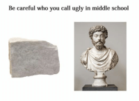 Like Classical Art Memes for more: Be careful who you call ugly in middle school Like Classical Art Memes for more