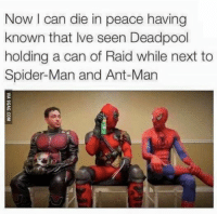 Meme, Memes, and Spider: Now can die in peace having  known that lve seen Deadpool  holding a can of Raid while next to  Spider-Man and Ant-Man Like Star Wars Memes!!