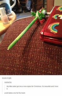 Beautiful, Christmas, and Funny: broshi-4-lyfe  roekachu:  My little sister got me a new stylus for Christmas. It's beautiful and I love  yoshi takes one for the team