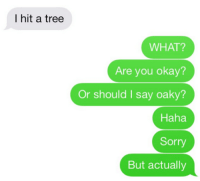 You Okay: I hit a tree  WHAT?  Are you okay?  Or should I say oaky?  Haha  Sorry  But actually