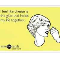 """""""Sweet dreams are made of cheese 💛 who am I to dis a Brie 💛 I cheddar the world and a feta cheese 💛 everybody's looking for Stilton"""" 💛: I feel like cheese is  the glue that holds  my life together.  ee  cards  user card """"Sweet dreams are made of cheese 💛 who am I to dis a Brie 💛 I cheddar the world and a feta cheese 💛 everybody's looking for Stilton"""" 💛"""