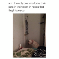 sad pet @typicalgirl: am i the only one who locks their  pets in their room in hopes that  theyll love you sad pet @typicalgirl