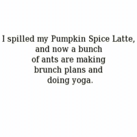 Later we're going for froyo🐜🍦🐜-REPOST from my fellow Fab Basicgal-@basicbetchproblem -@basicbetchproblem -@basicbetchproblem fabsquad: I spilled my Pumpkin Spice Latte  ,  and now a bunch  of ants are making  brunch plans and  doing yoga. Later we're going for froyo🐜🍦🐜-REPOST from my fellow Fab Basicgal-@basicbetchproblem -@basicbetchproblem -@basicbetchproblem fabsquad