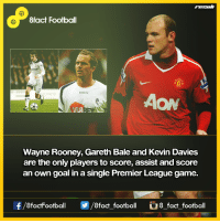 Did you know that...  8fact Football: 8fact Football  AON  Wayne Rooney, Gareth Bale and Kevin Davies  are the only players to score, assist and score  an own goal in a single Premier League game.  f/8factFootball A8 fact football Cu  8 fact football Did you know that...  8fact Football