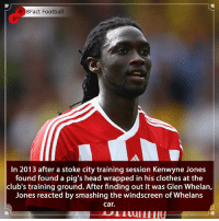 Would you find this funny ? 😂🤮🤨 • • england liverpoolfc bayernmunich premierleague stoke london joke prank funny angry football: 8Fact Football  In 2013 after a stoke city training session Kenwyne Jones  found found a pig's head wrapped in his clothes at the  club's training ground. After finding out it was Glen Whelan,  Jones reacted by smashing the windscreen of Whelans  car. Would you find this funny ? 😂🤮🤨 • • england liverpoolfc bayernmunich premierleague stoke london joke prank funny angry football