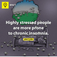 8FACT  Highly stressed people  are more prone  to chronic insomnia.  8FACT COM