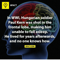 Just... How? (via 8fact): 8FACT  In WWI, Hungarian soldier  Paul Kern was shot in the  frontal lobe, making him  unable to fall asleep.  He lived for years afterwards,  and no one knows how.  8FACT COM Just... How? (via 8fact)