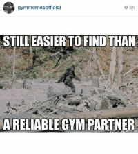 Accurate.  Instagram: @gymmemesofficial: 8h  gymmemesofficial  RSTILLEASIERTO FIND THAN  A RELIABLE GYM PARTNER Accurate.  Instagram: @gymmemesofficial