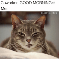 You need to relax: Coworker: GOOD MORNING!!!  Me:  @catsaresuchdicks You need to relax