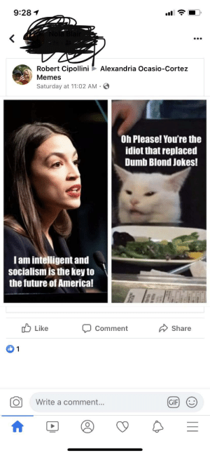 WTF does this mean?: 9:28 1  Nola Blair  Robert Cipollini  Alexandria Ocasio-Cortez  Memes  Saturday at 11:02 AM •  Oh Please! You're the  idiot that replaced  Dumb Blond Jokes!  Iam intelligent and  socialism is the key to  the future of America!  O Like  Share  Comment  Write a comment...  (GIF)  (:)     WTF does this mean?