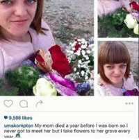 Anime, Funny, and Instagram: 9,586 likes  umakompton My mom died a year before I was born so I  never got to meet her but I take flowers to her grave every need me a gril like this - - memes dankmemes tumblr lmao relatable cancer love kys funny wtf earrape cringe autism shrek followback amazing furries comedy anime igers kms trump smile playstation xbox idubbbz spongebob instagramers youtube instagram