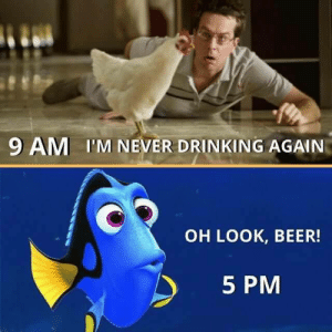 omg-humor:  My Friday in a nutshell: 9 AM I'M NEVER DRINKING AGAIN  OH LOOK, BEER!  5 PM omg-humor:  My Friday in a nutshell