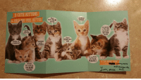 I've been PMS-ing. My boyfriend gave me this card..: 9 CUTE KITTENS  to HELP OU FEEL BETTER  LOOK at ME!  WISHING YOU  SURRENDER  che FURRY BEST!  to the  CUTENESS  THOUGHT  YOU could USE  SOME WARM  FUZZIES  Hope  YOURE FELINE  BETTER  Please  POUNCE BACK  SOON!  RECOMMEND  a CATNAP  Sorry YOURE  NOT FEELING  PURR FECT  YOU DESERVE  to FEEL GOOD...  and IM NOT  KITTEN  AROUND  IF THIS DOESNT WORK  ummy Worms  and margarita  ove, Alex XL I've been PMS-ing. My boyfriend gave me this card..
