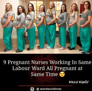 Memes, Pregnant, and Weird: 9 Pregnant Nurses Working In Same  Labour Ward All Pregnant at  Same Time ④  Weird World  @ weirdworldinsta