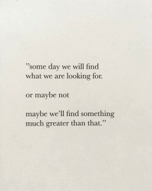 "Looking, Day, and Will: 9  ""some day we will find  what we are looking for.  or maybe not  maybe we'll find something  much greater than that."""