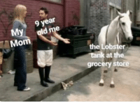 MeIRL, Mom, and Lobster: 9 year  My  Mom  the Lobster  grocery store meirl