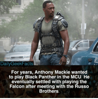 Memes, Black, and Black Panther: 900  DailyGeekFacts  For years, Anthony Mackie wanted  to play Black Panther in the MCU. He  eventually settled with playing the  Falcon after meeting with the Russo  Brothers Black Panther or the Falcon? 🤔 - thefalcon samwilson blackpanther tchalla captainamerica steverogers spiderman spidermanhomecoming marvel mcu marvelcomics marvelfacts dailygeekfacts