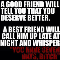 best friend meme: A GOOD FRIEND WILL  TELL YOU THAT YOU  DESERVEBETTER.  A BEST FRIEND WILL  CALL HIM UPLATE AT  NIGHT AND WHISPER  YOU SEVEN  NAYS BITCH""