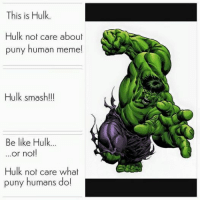 Be Like, Meme, and Memes: This is Hulk.  Hulk not care about  puny human meme!  Hulk smash!!!  Be like Hulk...  or not!  Hulk not care what  puny humans do! ~Deadpool