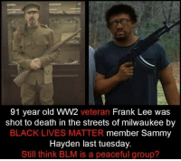 ww2: 91 year old WW2  veteran  Frank Lee was  shot to death in the streets of milwaukee by  BLACK LIVES MATTER member Sammy  Hayden last tuesday.  Still think BLM is a peaceful group?