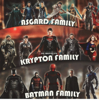 Batman, Family, and Memes: 920  DC.MARYELLIPG Which family is your favourite? By @dc.marvel.jpg Guys follow my @bat_cat_infinite For the best content @bat_cat_infinite @bat_cat_infinite dc dccomics dceu dcu dcrebirth dcnation dcextendeduniverse batman superman manofsteel thedarkknight wonderwoman justiceleague cyborg aquaman martianmanhunter greenlantern theflash greenarrow suicidesquad thejoker harleyquinn catwoman