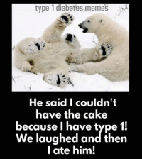 Last weeks caption contest winner is Laura Fishback-Springer!: type 1 diabetes memes  He said I couldn't  have the cake  because I have type  1!  We laughed and then  I ate him! Last weeks caption contest winner is Laura Fishback-Springer!