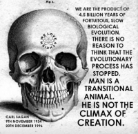 --Colby: E Lo  13 H  CARL SAGAN  9TH NOVEMBER 1934  20TH DECEMBER 1996  WE ARE THE PRODUCT OF  4.5 BILLION YEARS OF  FORTUITO US, SLOW  BIOLOGICAL  EVOLUTION.  THERE IS NO  REASON TO  THINK THAT THE  EVOLUTIONARY  PROCESS HAS  STOPPED  MAN IS A  TRANSITIONAL  ANIMAL.  HE IS NOT THE  CLIMAX OF  CREATION. --Colby