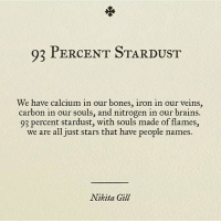 "Bones, Brains, and Stars: 93 PERCENT STARDUST  We have calcium in our bones, iron in our veins,  carbon in our souls, and nitrogen in our brains.  93 percent stardust, with souls made of flames,  we are all just stars that have people names  Nikita Gil <p>93 Percent Stardust via /r/wholesomememes <a href=""https://ift.tt/2rKYdnl"">https://ift.tt/2rKYdnl</a></p>"