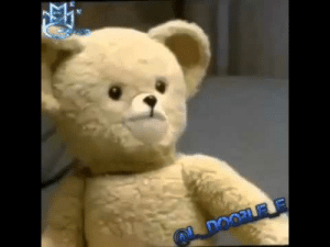 93+ Snuggle Bear On Twitter What Would Your Snugglebear Meme Caption ...: 93+ Snuggle Bear On Twitter What Would Your Snugglebear Meme Caption ...