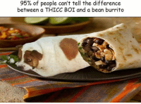 Beaned: 95% of people can't tell the difference  between a THICC BOI and a bean burrito