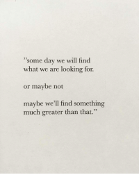 "Looking, Day, and Will: 95  ""some day we will find  what we are looking for.  or maybe not  maybe we'ľll find something  much greater than that."""