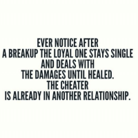 Single Meme: EVER NOTICE AFTER  A BREAKUP THE LOYAL ONE STAYS SINGLE  AND DEALS WITH  THE DAMAGES UNTIL HEALED  THE CHEATER  IS ALREADY IN ANOTHER RELATIONSHIP