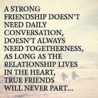 True Friends Meme: A STRONG  FRIENDSHIP DOESN'T  NEED DAILY  CONVERSATION,  DOESN'T ALWAYS  NEEDTOGETHERNESS,  AS LONG AS THE  RELATIONSHIP LIVES  IN THE HEART,  TRUE FRIENDS  WILL NEVER PART.