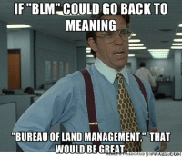 "IF ""BLM COULD GO BACK TO  MEANING  BUREAU OF LANDMANAGEMENT THAT  WOULD BE GREAT As someone who does surveying near government land."