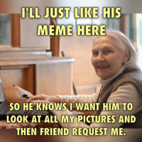 friends meme: LL JUST LIKE HIS  MEME HERE  SO HE KNOWS I WANT HIM TO  LOOK AT ALL MY PICTURES AND  THEN FRIEND REQUEST ME.