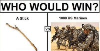 us marine: WHO WOULD WIN?  1000 US Marines  A Stick  VS