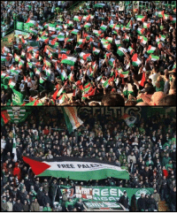 Celtic, Memes, and Celtics: 97-50  ey  FREE PA-  Wi  psi These Celtic fans broke the rules to show their love for Palestine.
