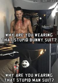 FACEBOOK-COMIWRESTLINGMEMES  WHY ARE YOU WEARING  THAT STUPID BUNNY SUIT?  WHY ARE YOU WEARING  THAT STUPID MAN SUIT? An actual reason to watch Main Event this week