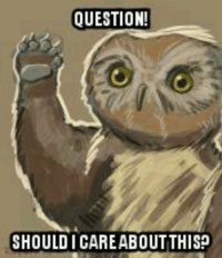 It's a little known fact that most owlbears are TAUGHT to not care. The more you know! ‪#‎owlbeardontcare‬  ‪#‎isthisjokestillrelevant‬ -Toolmaster: QUESTION!  SHOULD I CAREABOUTTHIS? It's a little known fact that most owlbears are TAUGHT to not care. The more you know! ‪#‎owlbeardontcare‬  ‪#‎isthisjokestillrelevant‬ -Toolmaster