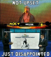 Poor Dixie: NOT UPSET  NXT  JAMES STORM  RFACEBOOK.COMIWRESTLINGMEMES  aWORLDTITLESERIES  BIGGEST DISAPPOINTMENT  ALL NEW SEASON  RAILROAD  SATURDAY 10/9  JUST DISAPPOINTED Poor Dixie
