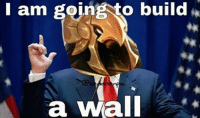 I am going to build  a Wall Trumpzir
