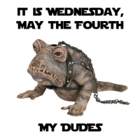 My Dudes: IT WEDNESDAY,  MAY THE FOURTH  MY DUDES