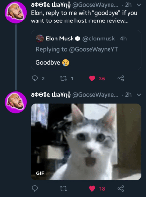 "Gif, Meme, and Elon Musk: 9Dese Wa¥ne @GooseWayne... 2h  Elon, reply to me with ""goodbye"" if you  want to see me host meme review...  Elon Musk @elonmusk 4h  Replying to @GooseWayneYT  Goodbye  LI 1  2  36  9DeSe Wa¥ne @GooseWayne... 2h  GIF  18 Now he's gotta do it."